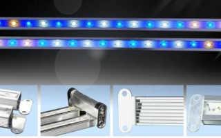 Выбираем вместе светодиодные лампы для аквариума и производим монтаж