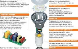 Таблица светодиодных ламп и ламп накаливания, все за и против