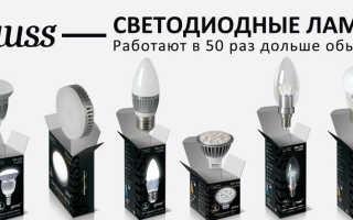 Светодиодные лампы Gauss, плюсы и минусы популярной продукции