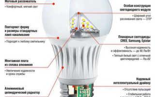 Как выбрать светодиодные лампы для дома, советы