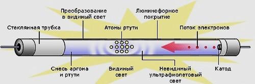 46868310.jpg