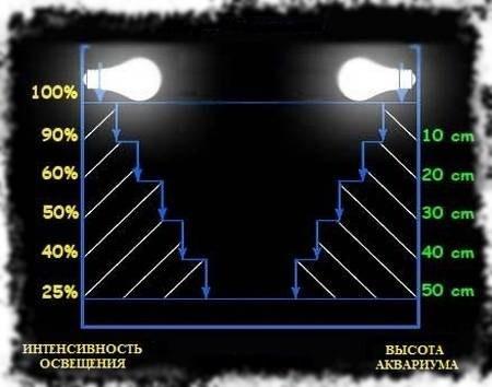Расчет лампы