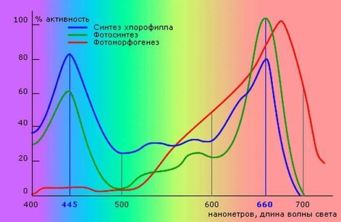 Пики оптического спектра для фотосинтеза