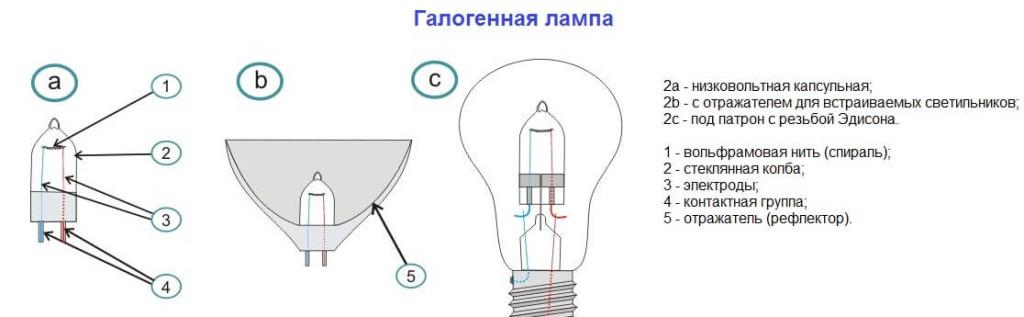 Разновидности и устройство лампы