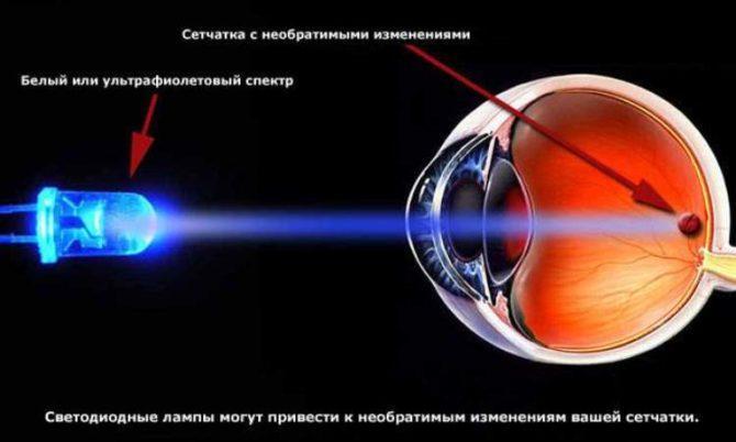 Сетчатка, LED