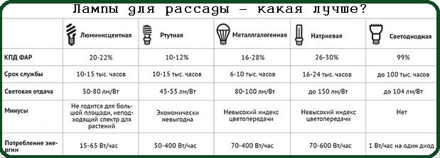 Сравнение различных видов ламп